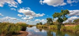 02_Kruger_National_Park_Landscape_3.jpg
