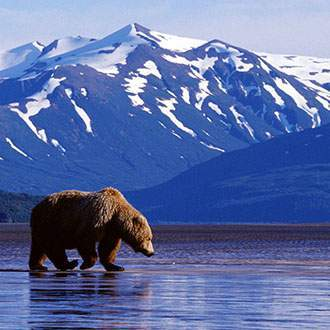 Alaska: Denali to Prince William Sound