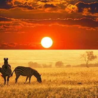 Σαφάρι Κένυα - Σευχέλλες