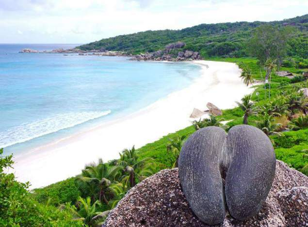 Αρχιπέλαγος Σεϋχελλών