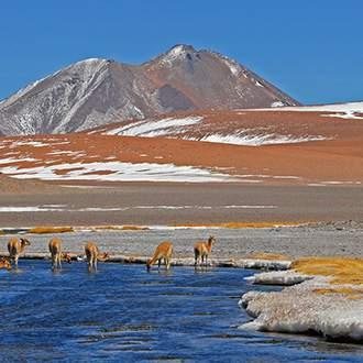 Σαντιάγκο της Χιλής – Νησί του Πάσχα